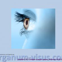 Голубев Сергей Юрьевич (г. Москва, Россия) доклад на вебинаре 03 марта 2016г. в рамках совместного образовательного проекта портала Орган зрения www.organum-visus.com и компании URSAPHARM.  Webinar treatment of dry eye. Часть 3.